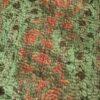 sjaal eerlijke mode india phasala zijde